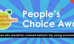 YEA-2017-Peoples-Choice-Award-Banner